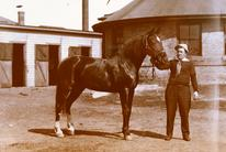 Reynolds' horse, Lucille, posed with the University of Minnesota's round room in the background.  The round room, lit with an overhead skylight, was a part of the